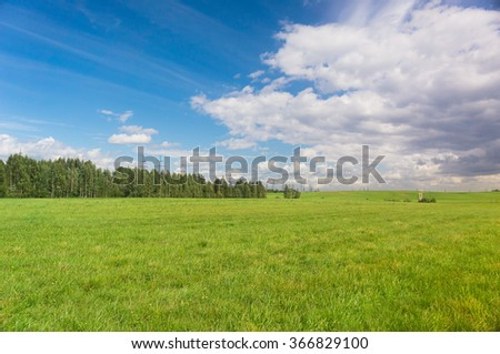 Vibrant Nature Grass Land  - stock photo