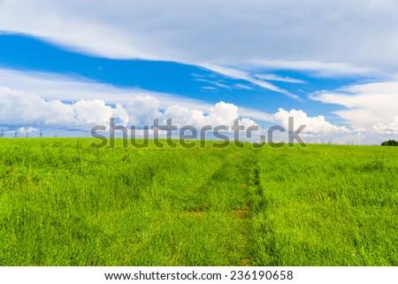 Vibrant Nature Scenic View  - stock photo