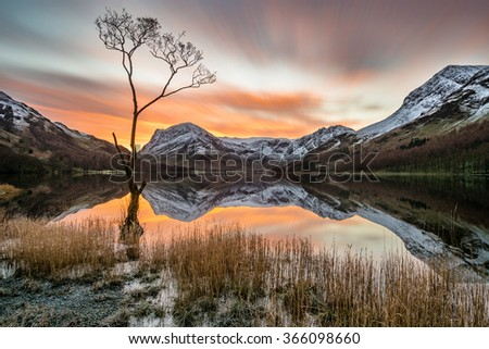 Vibrant orange sunrise with moving clouds and snowcapped mountains reflecting in calm still water with lonely tree in foreground at Buttermere, Lake District, UK. - stock photo