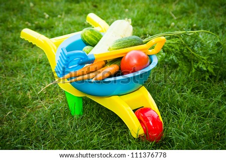 Vibrant plastic toy barrow with vegetables and toy rake - stock photo