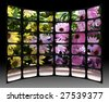 Video wall with Summer Flowers - stock photo