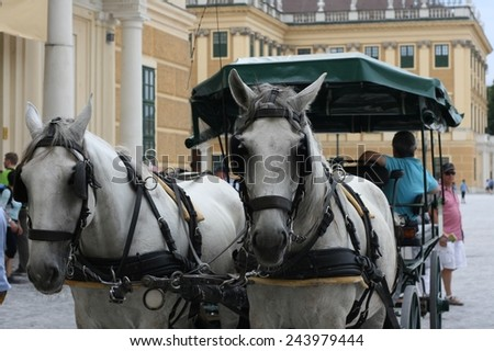 VIENNA, AUSTRIA - AUGUST 10, 2014: Horse carriage called the fiaker transports tourists in Vienna in front of Schonbrunn palace. - stock photo