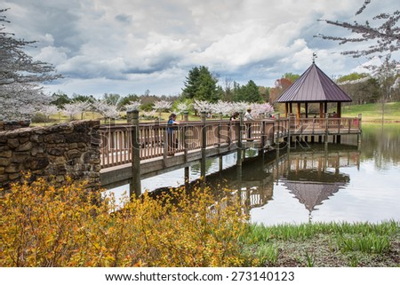 Ordinaire VIENNA, VA   APRIL 17, 2015: Community Residents Visit Meadowlark Botanical  Gardens For