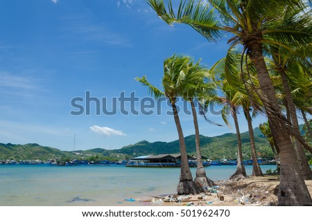 Vietnam beach landscape, beautiful beach with clean water and coconut forest