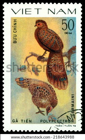 VIETNAM - CIRCA 1978 : A stamp printed by Vietnam  shows bird an Polyplectron Germaini,  from the series  Ornamental bird , circa 1978. - stock photo