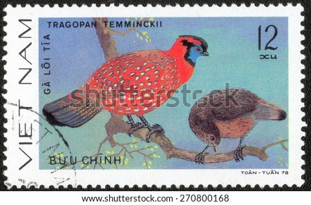 VIETNAM - CIRCA 1978 : A stamp printed by Vietnam shows bird , from the series Ornamental bird , circa 1978.  - stock photo
