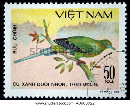 VIETNAM - CIRCA 1980: A stamp printed by Vietnam shows bird Pin-tailed Green Pigeon - Treron apicauba, stamp is from the series, circa 1980