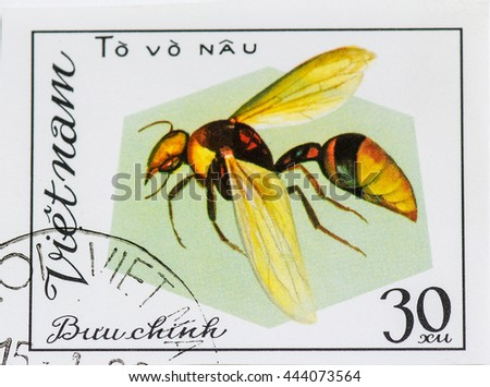 VIETNAM - CIRCA 1982: A stamp printed in Vietnam shows Insect To vo nau, circa 1982 - stock photo