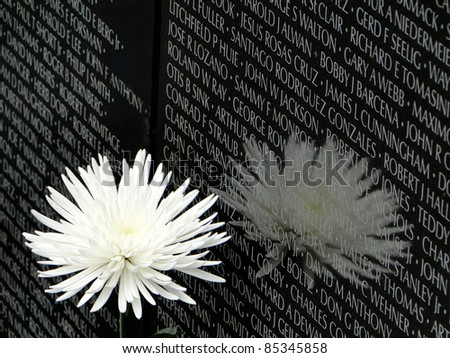 Vietnam Memorial 3/4 scale - stock photo