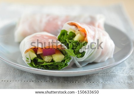 vietnamese spring rolls  with Salmon - stock photo