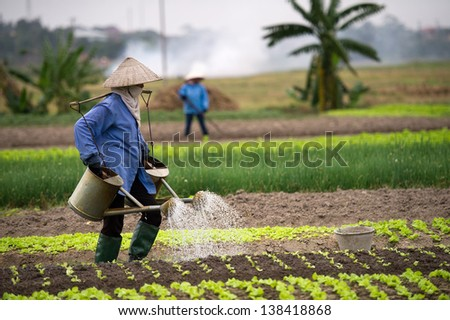 Vietnamese typical agriculture works