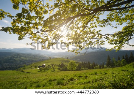View at the mountain village, pasture and wooden house through fresh green leaves of the maple tree and rays of the sun. Carpathian mountains, Ukraine. - stock photo