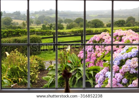 View at the wet morning garden from inside through the large window. Further flowered garden there is a green Irish countryside.  - stock photo