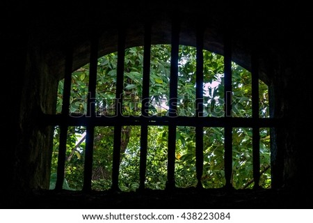 View from a former prison at Ile Royale, one of the islands of Iles du Salut (Islands of Salvation) in French Guiana. - stock photo