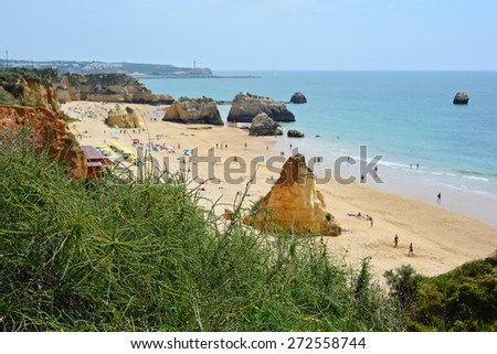 View from above to the beach. Shallow depth of field. Focus on the green bush - stock photo