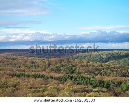 view from an observation tower above a forest in autumn / Nebra, Germany