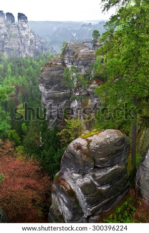 "View from ""Bastei"" in german national park (bear Dresden)"