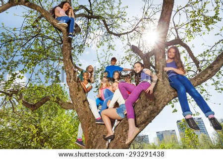 View from below of teenagers sitting on the tree - stock photo