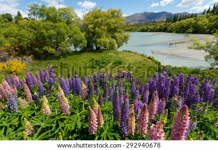 View from famous cycling track from Queenstown to Arrowtown passing the Shotover RIver. Otago Region, South Island, New Zealand - stock photo