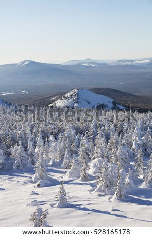 View from Mountain range Zyuratkul, winter landscape. Snow covered spruces