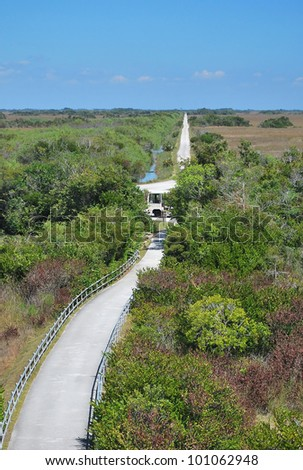 View from Observation Tower, Everglades National Park Florida