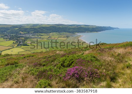 View from Selworthy Beacon to Porlock Bay Somerset England UK near Exmoor and west of Minehead on the south west coast path with purple heather
