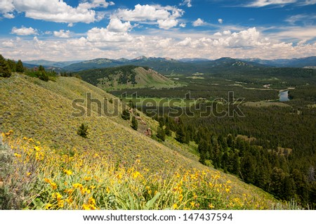 View from Signal Mountain in the Teton National Park, Wyoming. - stock photo
