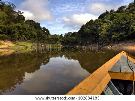View from the boat at Amazon river, with a dense forest on the shore and blue sky, Anazonas, Brazil