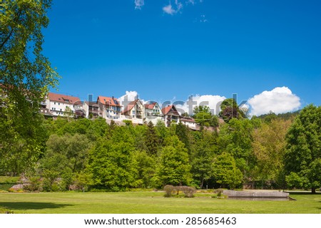 View from the city-park to the upper town of Wildberg, Black Forest, Baden-Wuerttemberg, Germany, Europe