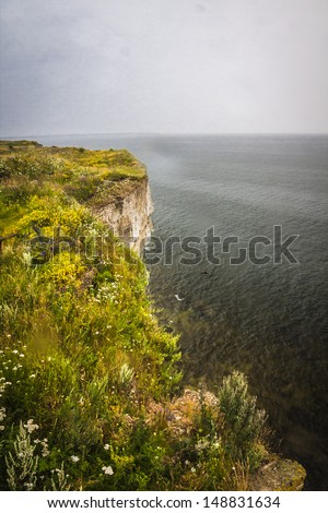 View from the highest cliff in Estonia