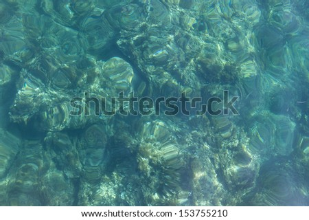 View from the surface of the sea. It is a shallow sea, very clear and turquoise in color. You can see some rocks, seaweed and fishes.