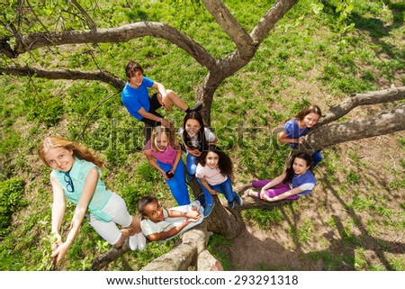 View from the top of teenagers sitting on tree - stock photo