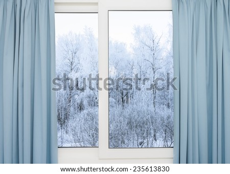 view from the window of a winter forest - stock photo