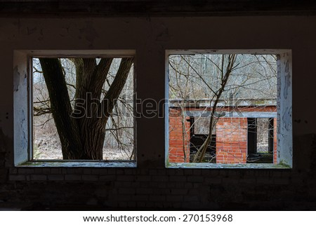 View from the window of an abandoned house - stock photo