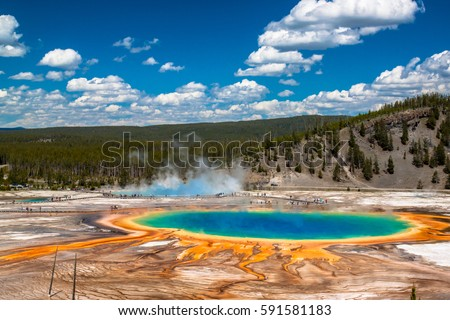 View from top of a hill of the iconic Grand Prismatic Spring in Yellowstone National Park