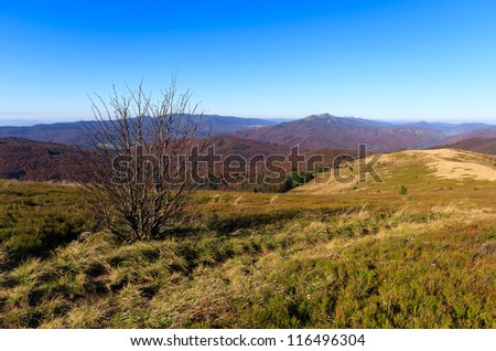View from trail to Bukowe Berdo in Bieszczady Mountains at autumn, Poland