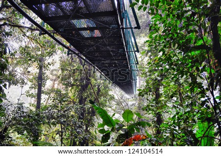View from underneath the many bridges which travel through the cloud forest of Monte Verde, Costa Rica - stock photo