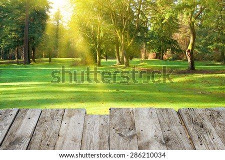 View from wooden surface to green park with trees. Lawn in under sunny light - stock photo