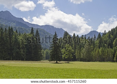 View into a valley at the Tyrolean Bavarian border with back Sonnwendjoch - stock photo