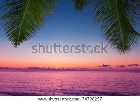 View Jungle Overhanging - stock photo