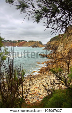 View of a beach with pebbles surrounded with cliffs a a frame of tree branches