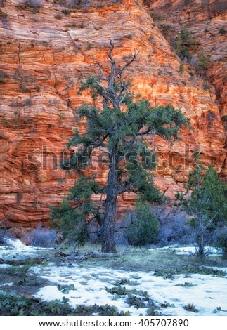 View of a pasture with red rock cliffs in the distant near Zion's national park Utah USA