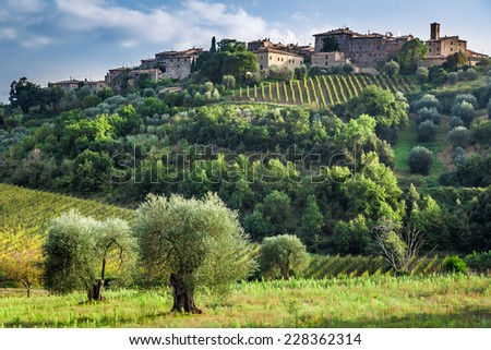 View of a small village in Tuscany - stock photo