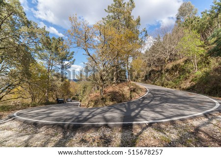 View of a tight road curve on the forest.