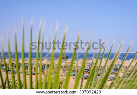 View of a tropical beach with recliner chairs and thatched umbrellas viewed through a palm frond in a conceptual image of a summer vacation - stock photo