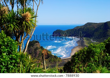 View of a west coast beach in New Zealand - stock photo