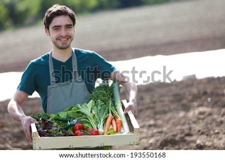 View of a Young happy farmer with a crate full of vegetable