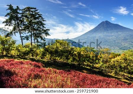 View of Agua Volcano outside Antigua, Guatemala - stock photo