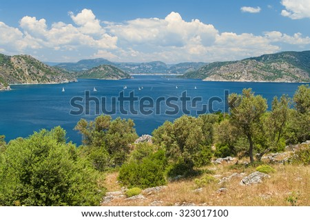 view of Amos bay  in Aegean sea with islands from small mountain top with olive trees and grass at foreground and white sail boats in the sea, Marmaris, Turkey - stock photo