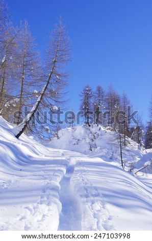 View of an alpine winter landscape with a track in the snow. - stock photo